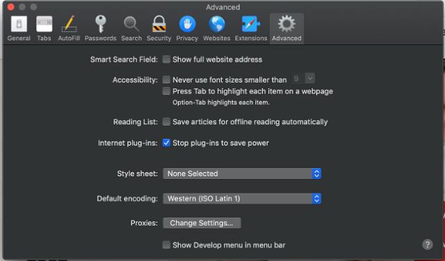 Safari_cache_step2
